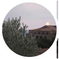 Il Blog di Anna Stella Scerbo